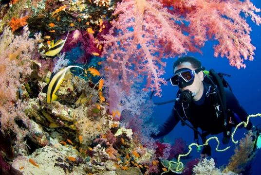 La Manga Club Diving & Watersports
